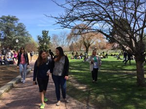 Students walking through campus commons